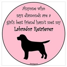Girls Best Friend - Lab Poster