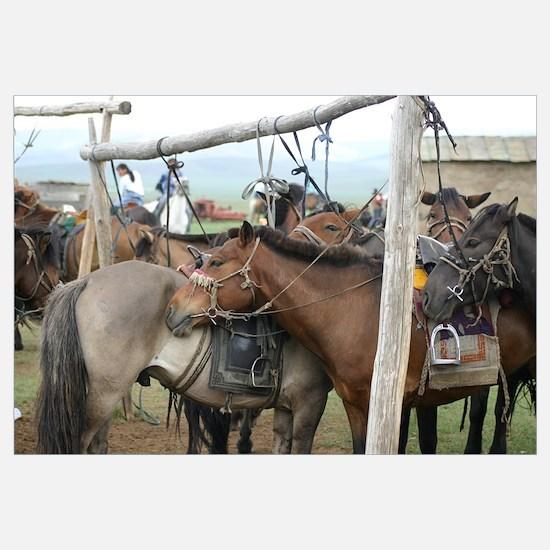 Nadaam Horses