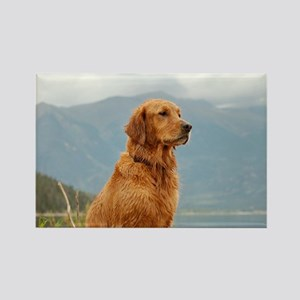 Golden Retriever Lake Rectangle Magnet