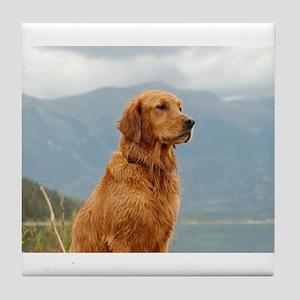 Golden Retriever Lake Tile Coaster