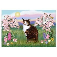 Blossoms / Calico cat Poster