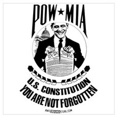 POW-MIA: U.S. Constitution Poster