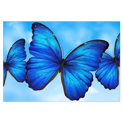 Blue Butterfly Canvas Art