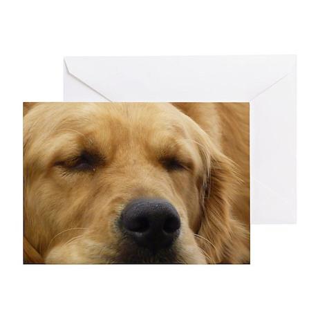 Golden Retriever sleeping Greeting Card