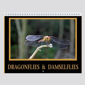 Dragonflies and Damselflies Wall Calendar