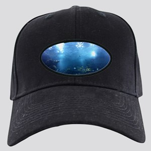 water world Black Cap