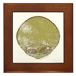 The Visitor (Green) (Distressed) Framed Tile