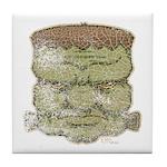Frankenstein's Monster (Distressed) Tile Coaster