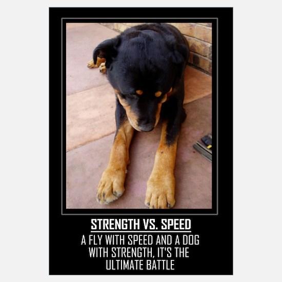 Strength vs. Speed