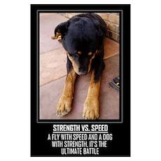 Strength vs. Speed Poster