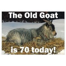 Old Goat is 70 Today Framed Print