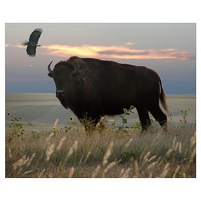 Bison Eagle Collage Poster