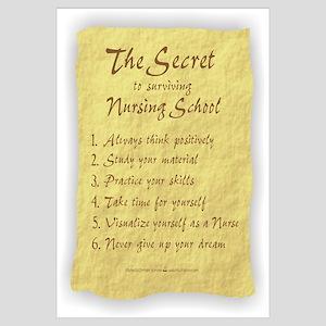 The Secret to Nursing School