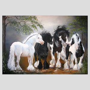 Gypsy Vanner Stallions