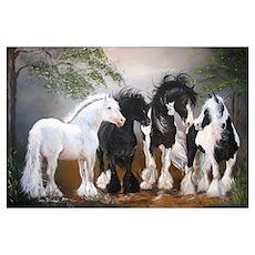 Gypsy Vanner Stallions Poster