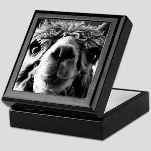 Say Cheese! Keepsake Box