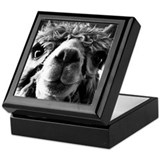 Farm animals Square Keepsake Boxes
