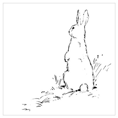 """Bunny Rabbit"" Framed Print"