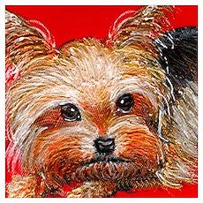 dog_yorkie_q01 Poster