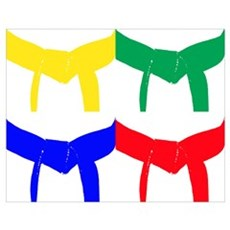 Martial Arts Colored Belts Poster