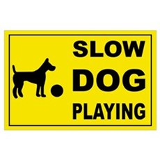SLOW DOG PLAYING Poster