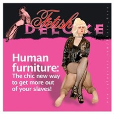 Human Furniture Poster