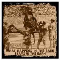 Jumper, stays in the barn. Poster