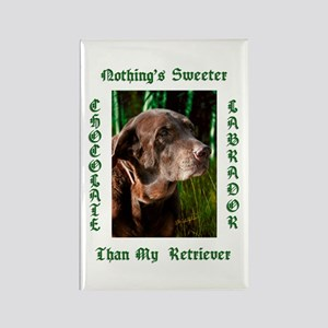 Chocolate Sweet Lab Rectangle Magnet