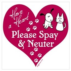 Have a Heart - Spay & Neuter Poster