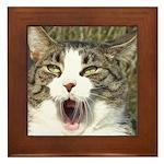 Opera kitty Framed Tile