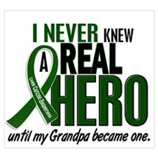 REAL HERO 2 Grandpa LiC Poster