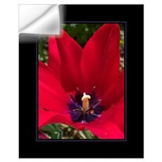 Red Tulip 16x20 Wall Decal