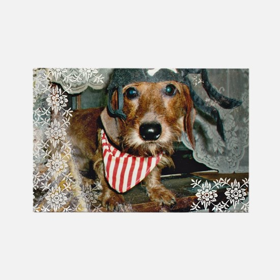 Puppy in Pirate Costume Rectangle Magnet