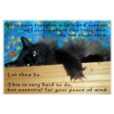 Nibbling Thoughts Black Cat Framed Print