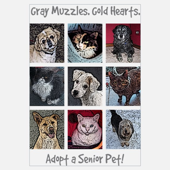 Cool Cats dogs Wall Art