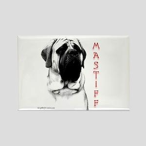 Mastiff 107 Rectangle Magnet