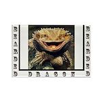 Bearded Dragon Rectangle Magnet (100 pack)