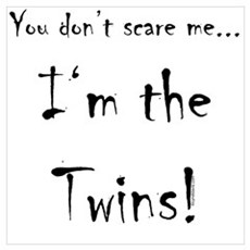I'm the Twins Poster