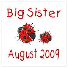 Big Sister Ladybugs August 20 Poster