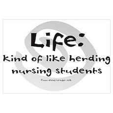 Like Herding Nursing Students Poster