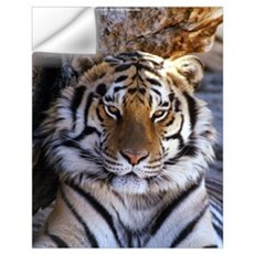 Tiger Wall Decal