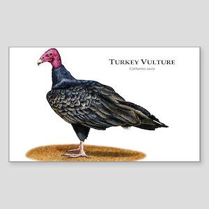 Turkey Vulture Sticker (Rectangle)