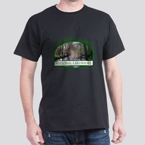 Indiana Dunes National Lakesh T-Shirt