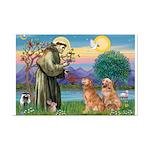 St Francis - 2 Goldens Mini Poster Print