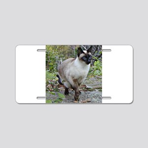 Siamese Cat Aluminum License Plate