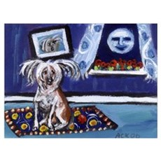 CHINESE CRESTED DOG smiling m Canvas Art