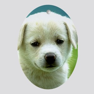 LAB PUPPY Ornament (Oval)