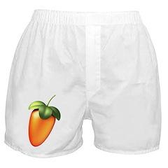 FL Logo Colored Boxer Shorts