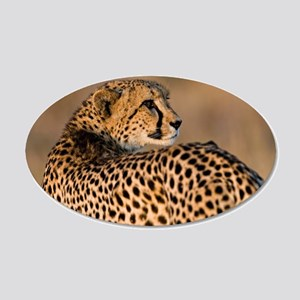 Cheetah 22x14 Oval Wall Peel