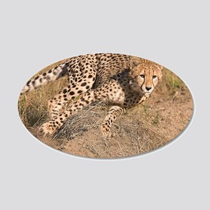 Cheetah On The Move 22x14 Oval Wall Peel
